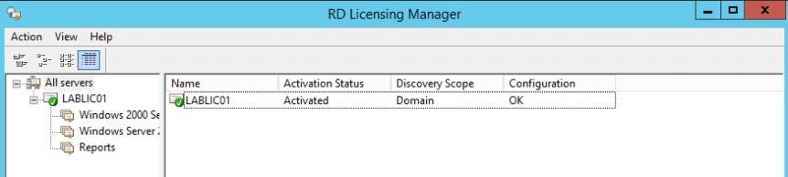 27 License Server - All Green
