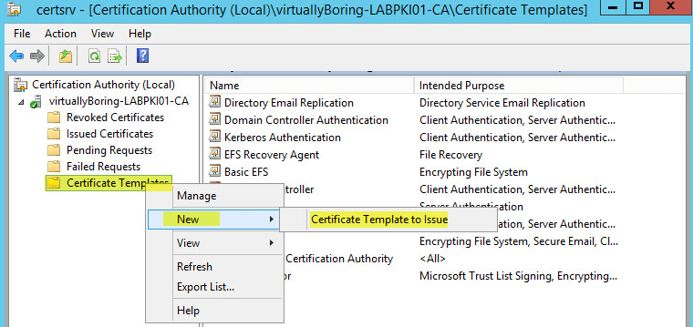 PKI 28 - Certification Authority - Create Template to Issue