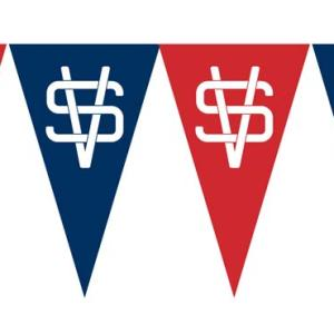 Virtual Storefronts Logo Pennants