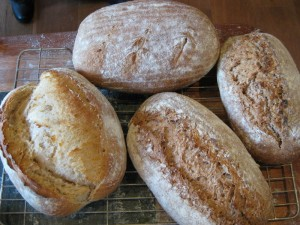 Make bread with Neill's flour