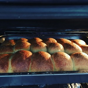 OMG they have continued to grow in the oven