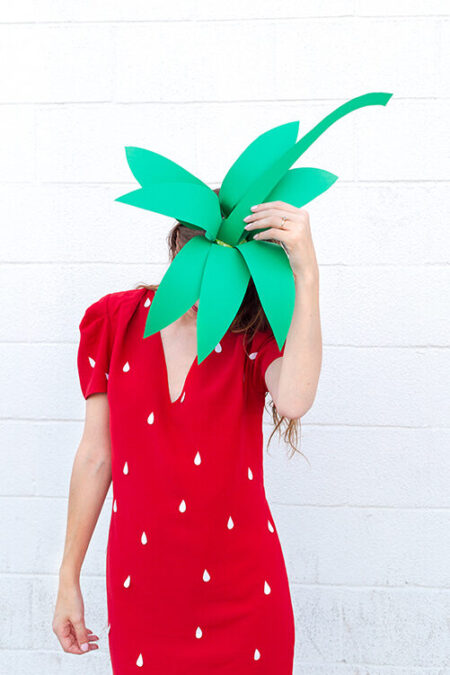 Strawberry Halloween Costume