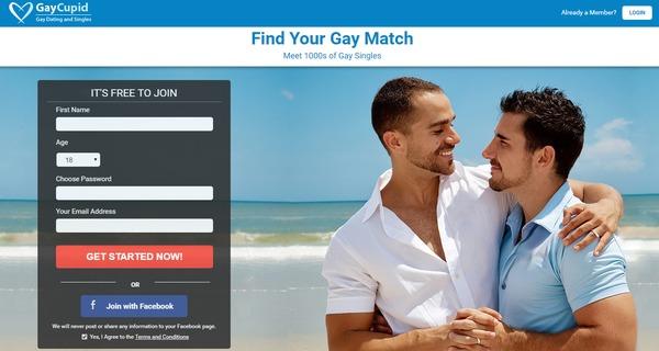 Gay dating web
