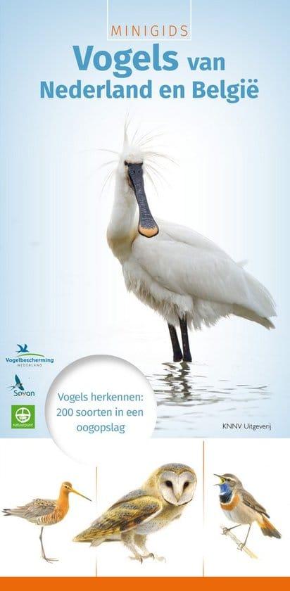 Toegift: MINIGIDS Vogels van Nederland en België