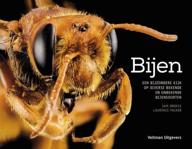 bijen-een-bijzondere-blik-op-diverse-bekende-en-onbekende-bijensoorten