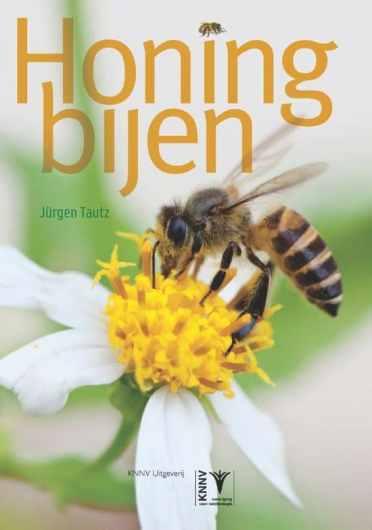 honingbijen-jurgen-tautz