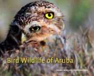 Bird Wildlife of Aruba Gregory Peterson