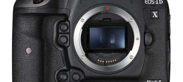 beste camera's voor vogelfotografie