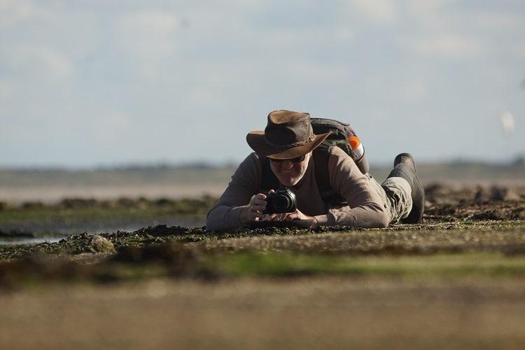 Vogelexcursie op maat (Zeeland/Zuid-Holland)