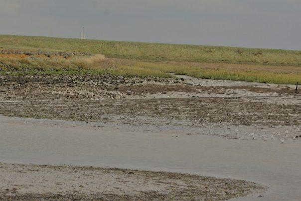 mooiste plekjes van zeeland landbouwhaven colijnsplaat sjaak huijer