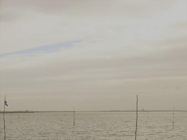 oosterschelde schelphoek zeelandbrug