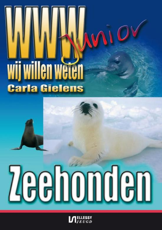 zeehonden kijken op de Brouwersdam