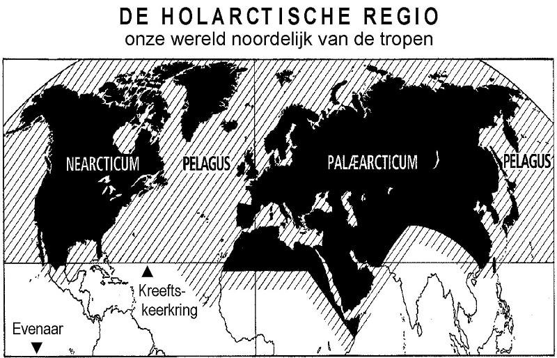De Holarctische Regio