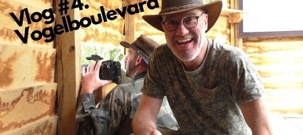Vlog 4 Vogelboulevard Jako van Gorsel