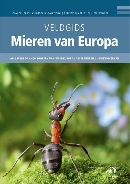 radiouitzending veldgids mieren van europa jitte groothuis