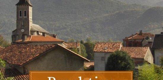 recensie prachtige pyreneeen leuntje aarnoutse