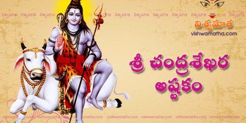 chandra sekhara ashtakam