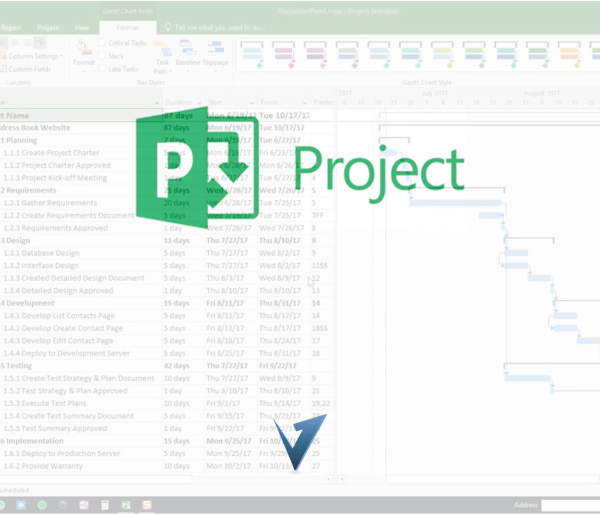 Microsoft Project Training Course, Classes, and Programs