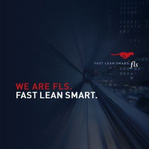 FLS, vacature, Consultant, Fast Lean Smart