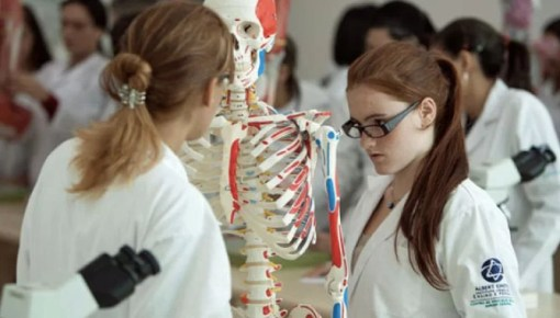 Academia Iteramericana de Ciências Médicas
