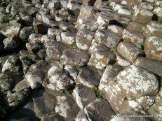 Northern Ireland Causeway Stones