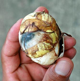Balut closeup
