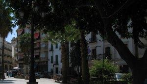 visita Coín Alameda