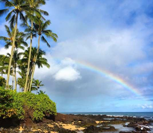 Visit The Rainbow State of Hawaii