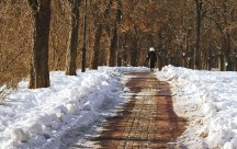 inverno-11