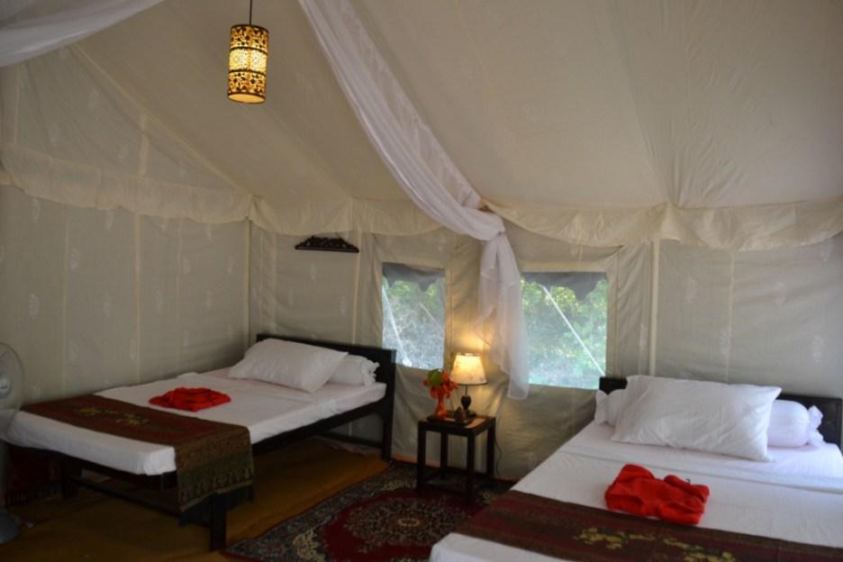 Temple tent safari