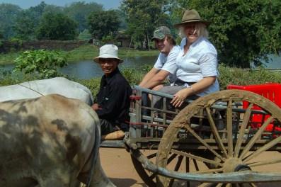Ox-cart ride