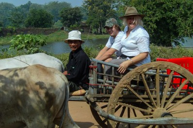Ox-cart ride