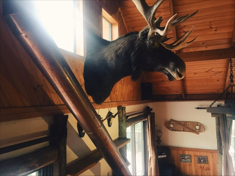 Moose Head Lodge