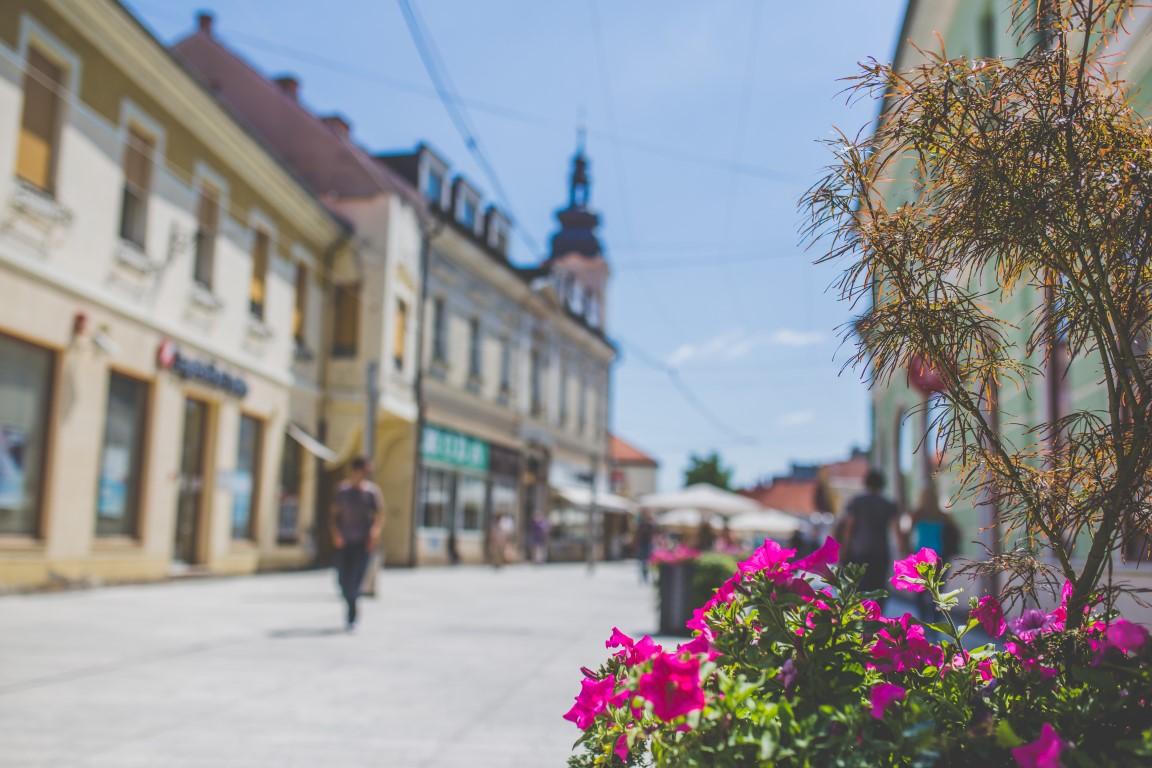 Hrvatski cvjetnjak