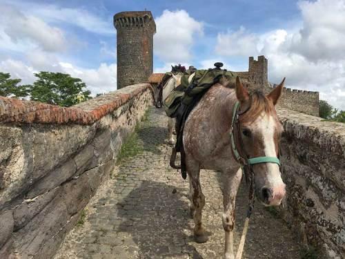 Trekking a Cavallo-MAREMMA-Visit Castell'Azzara