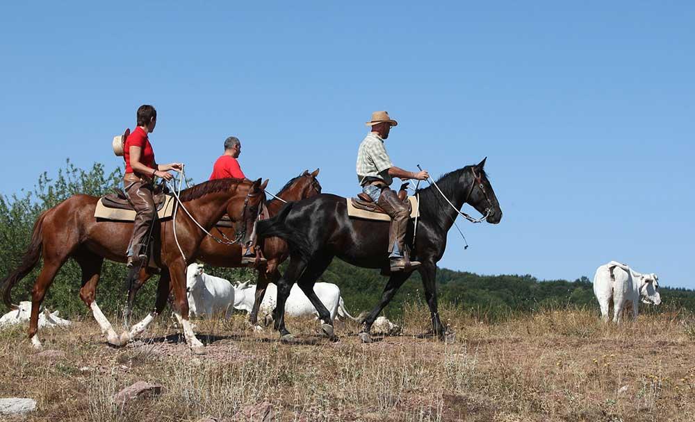 Settimana da Cowboy-Castell'Azzara-Il Cornacchino