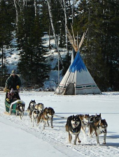 Erin Altemus Matt Schmidt dog sledding trips