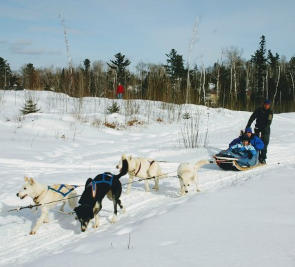 Gunflint Lodge Dog Team with man and boy