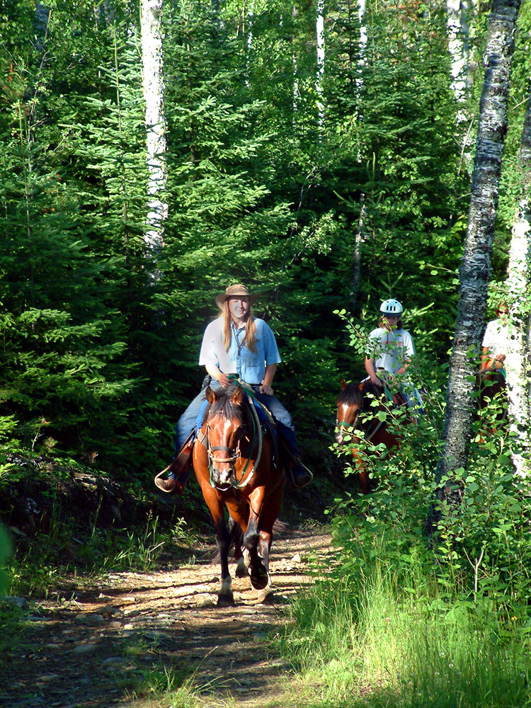Gunflint Lodge Stables Horse Trail Ride