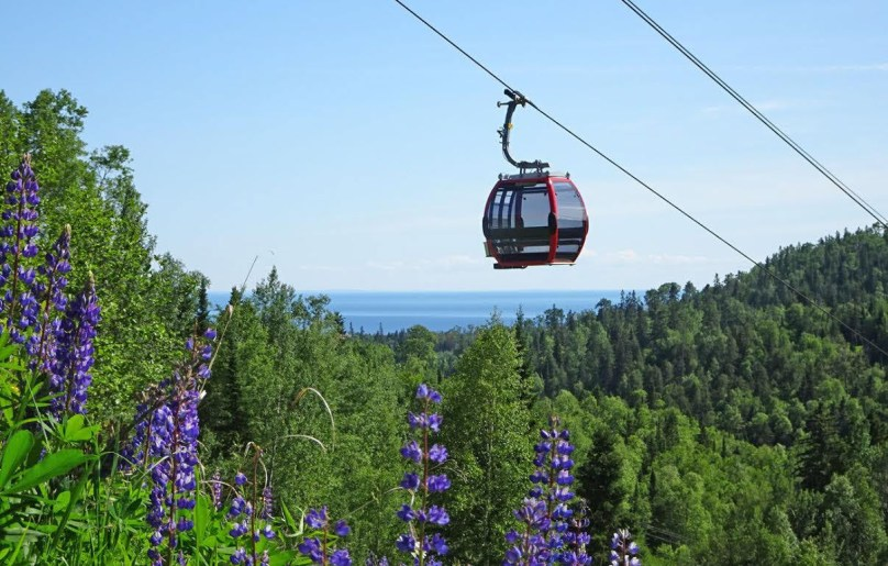 Eagle Ridge Resort Lutsen Mtns gondola with lupines