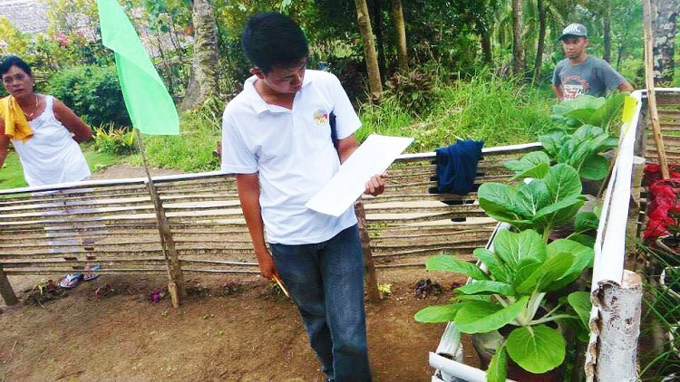 Del Carmen's purok evaluation