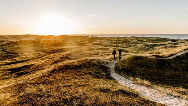 Thy National Park - VisitDenmark