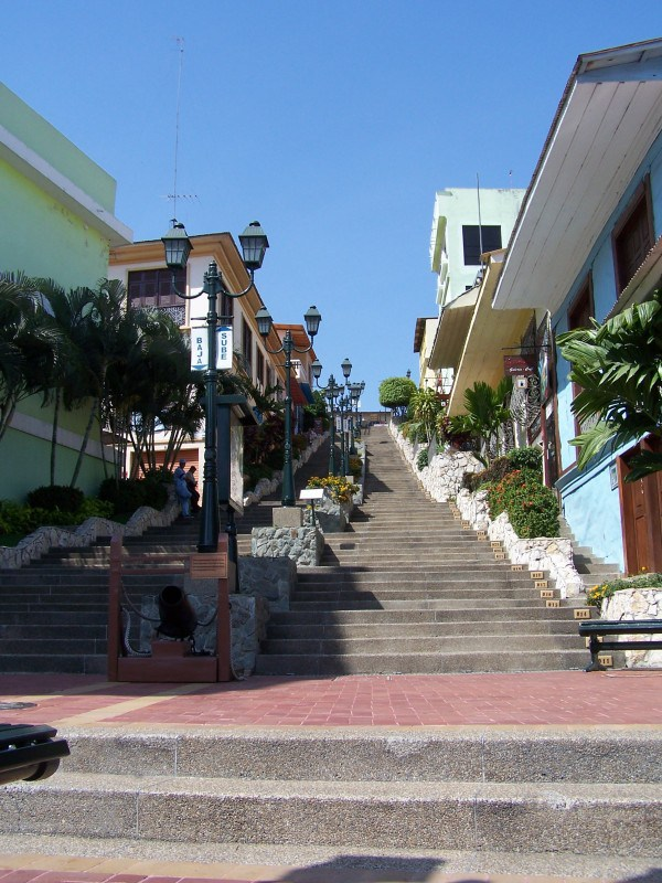 guayaquil-things-to-do-in-this-vibrant-port-city