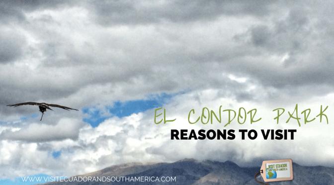 Reasons to visit Parque Condor in Otavalo, Ecuador