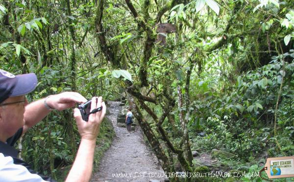 best-things-to-do-in-banos-tungurahua-ecuador2