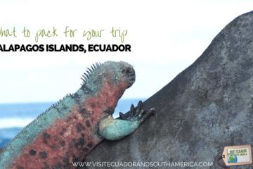 pack-galapagos-islands-trip