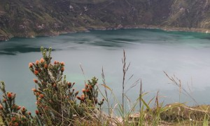 Visit Ecuador and South America