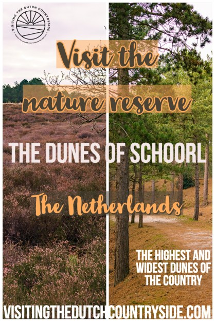 Visiting the dunes of Schoorl | Things to do in Schoorl | Places to visit in Noord-Holland | Off the beaten path day trips from Amsterdam | Most beautiful forests of The Netherlands to visit | Day trips from Alkmaar The Netherlands