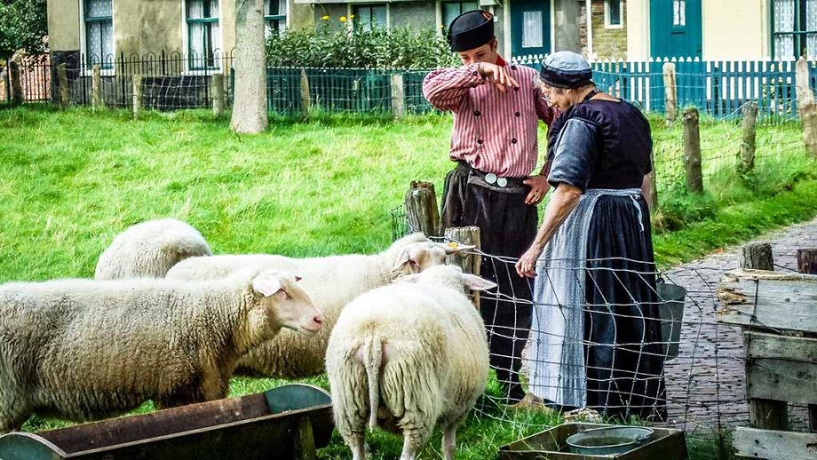 One of the best indoor and outdoor open air museums in The Netherlands: Zuiderzee museum. Here you see old dutch traditional clothing and local breeds of sheep