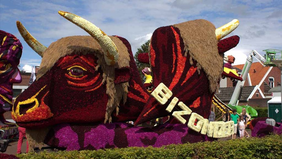 The bloemencorso of Winterswijk has the most floats of any of the flower parades of The Netherlands